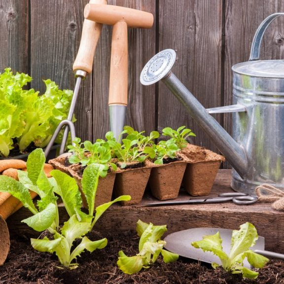 Gardens are essential